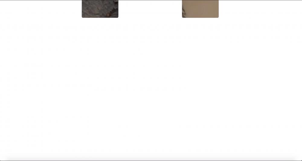 Screen Shot 2019-11-06 at 4.57.44 am.png